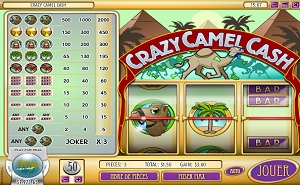 crazy-camel-cash-regles-du-jeu
