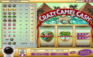 crazy-camel-cash-avis-sur-le-jeu