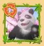 panda-party-parties-gratuites