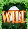 watch-the-birdie-wilds