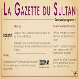 wild-sultan-bonus-la-gazette-du-sultan